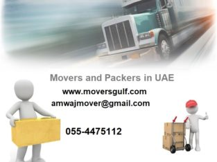 Movers and Packers in Dubai | Relocation Companies in Dubai