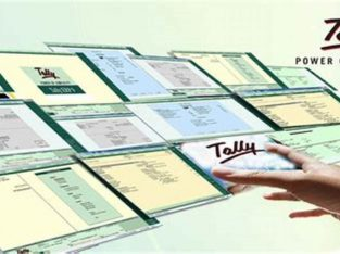 Tally Accounting Software Training-How to Use Tally | Freesoog