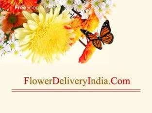 Deliver your heartfelt wishes by surrendering love in the form of gifts