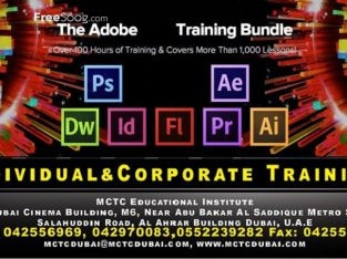 Adobe Certified Associate-Professional Adobe Courses in Dubai