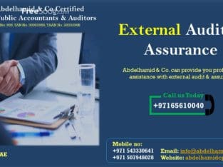 External Audit & Assurance Service