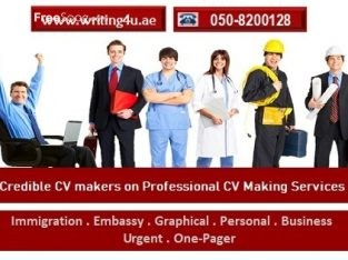 CV Writing Assistance