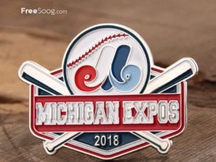 Michigan Expos Lapel Pins
