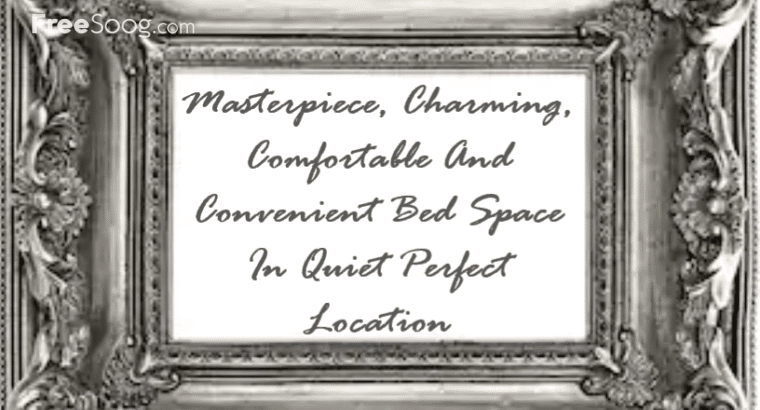 Masterpiece, Charming, Comfortable And Convenient Bed Space