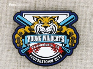 Young Wildcats Baseball Pin